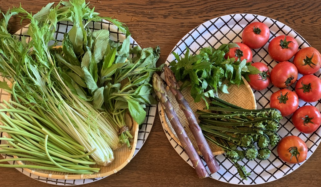 新鮮野菜たち